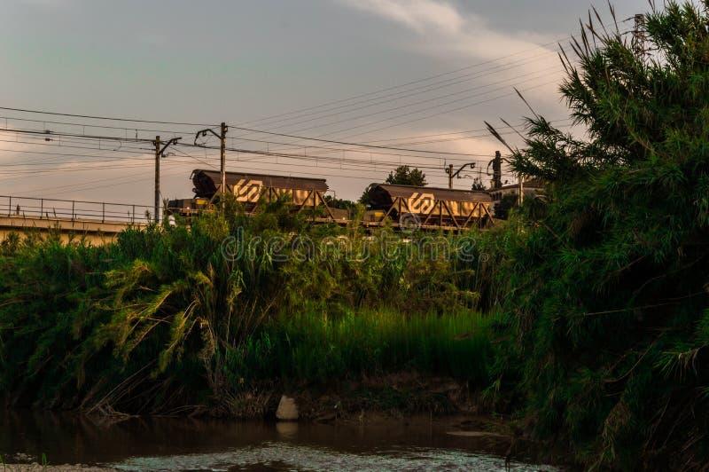 与老火车的热带风景 免版税图库摄影