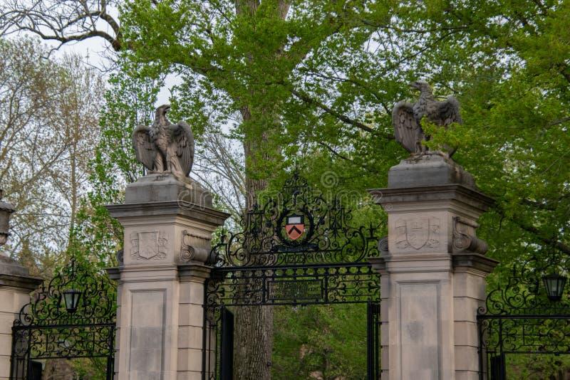 与老鹰雕塑的石专栏和在入口的锻铁门对普林斯顿大学 库存照片