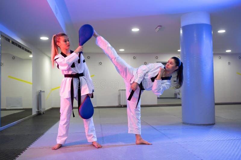 与耐久的反撞力垫目标的实践的跆拳道 库存图片
