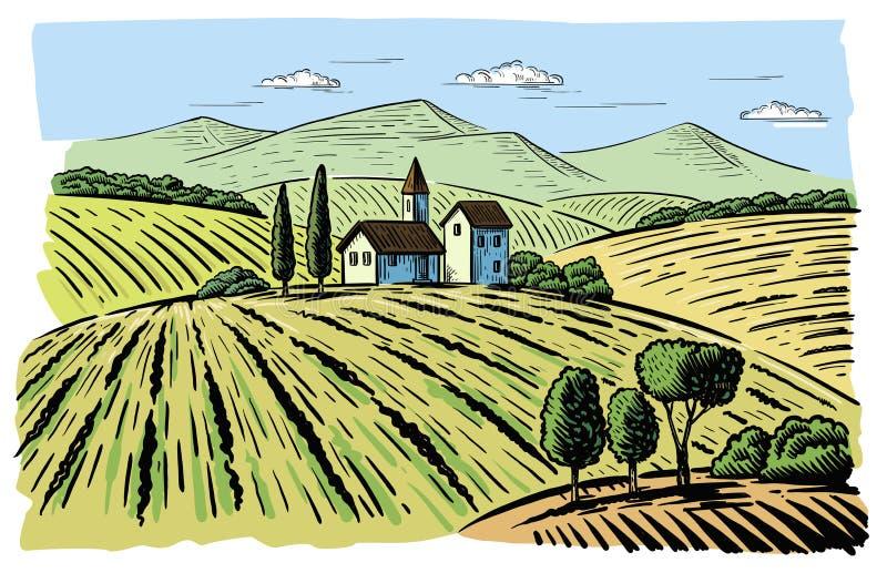 与耕地领域的风景 库存例证