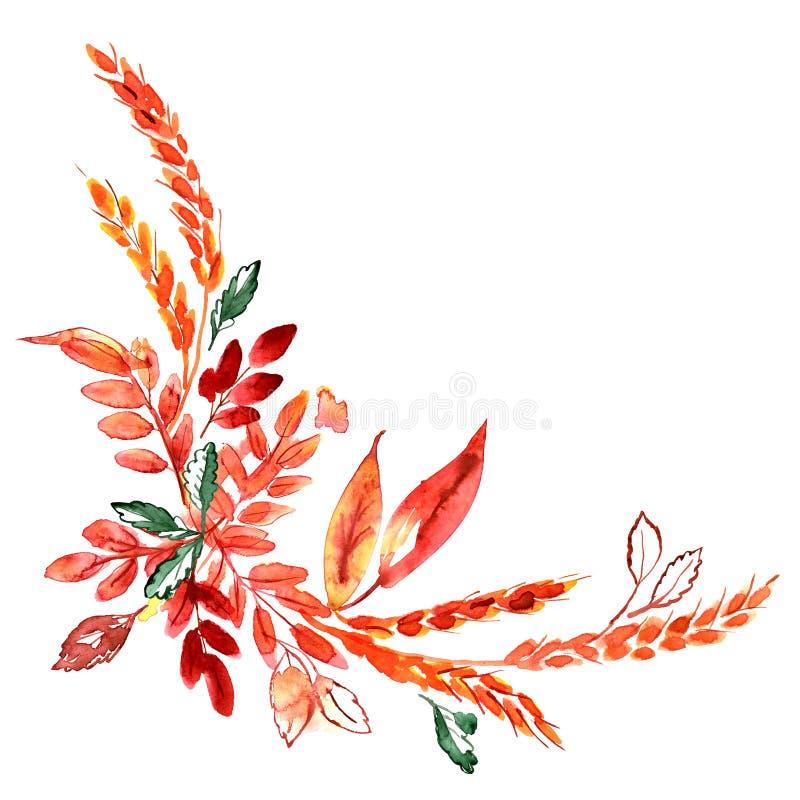 与耳朵和秋天橙色叶子的水彩手画角落 感恩装饰 库存例证