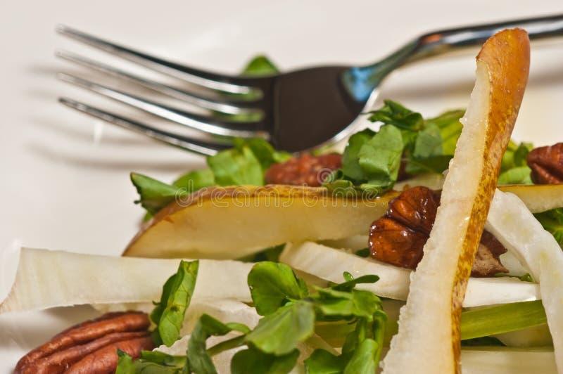与胡桃papeo的有机茴香、梨和水田芥沙拉节食 库存照片