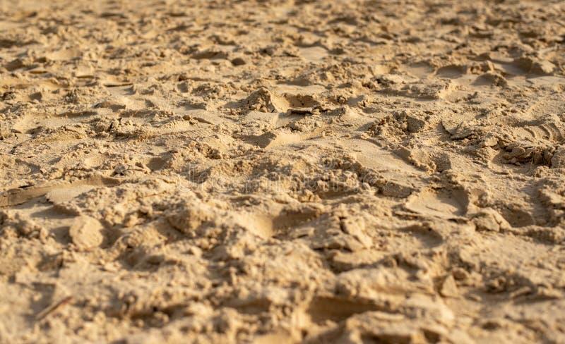 与脚印的沙子 库存照片