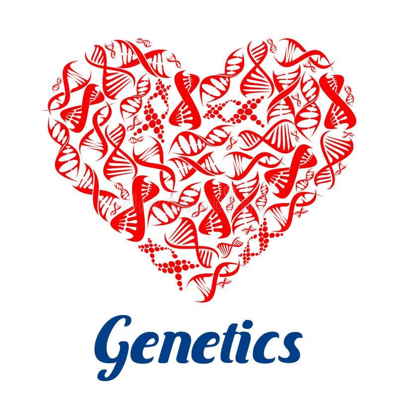 与脱氧核糖核酸标志的红色心脏 库存例证