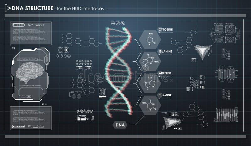 与脱氧核糖核酸结构的HUD infographic元素 未来派用户界面 抽象真正图表 皇族释放例证