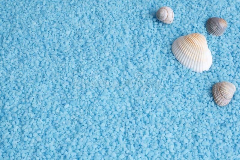 与腌制槽用食盐和海壳,蜗牛的海蓝色背景 免版税库存图片