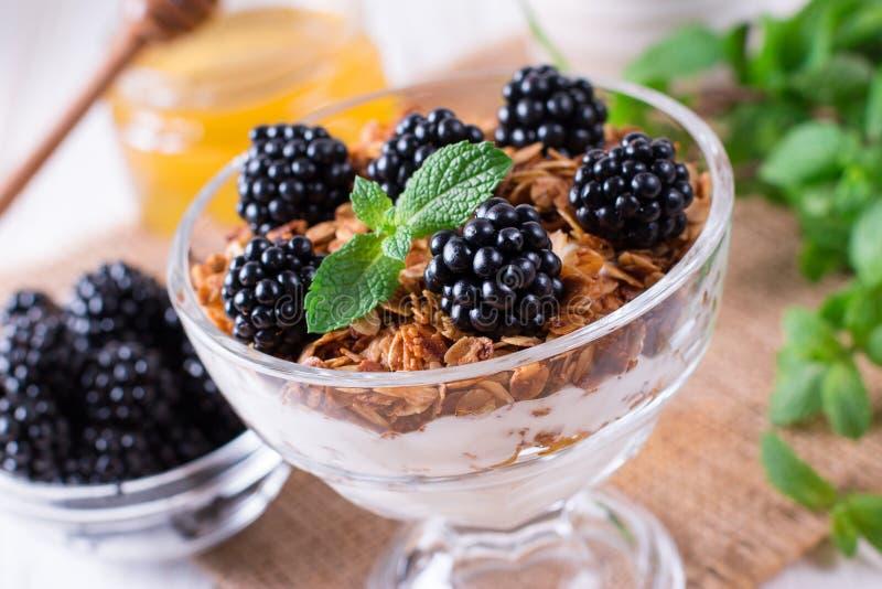 与自创格兰诺拉麦片的健康早餐和新鲜的莓果、酸奶与muesli和黑莓 免版税库存图片