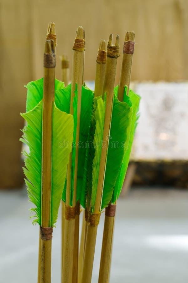 与自然全身羽毛的箭头 免版税库存图片