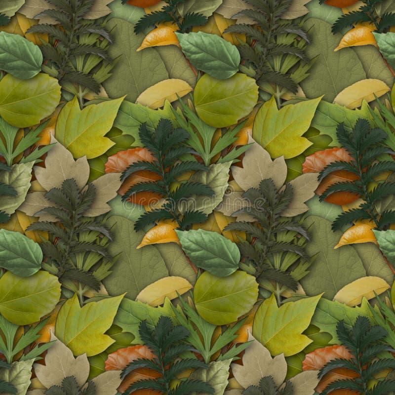 与自然叶子的伪装无缝的背景 库存图片