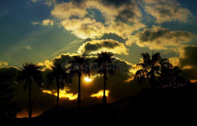 与自然和剪影棕榈树的美丽的景色在日落时间的天空 免版税图库摄影