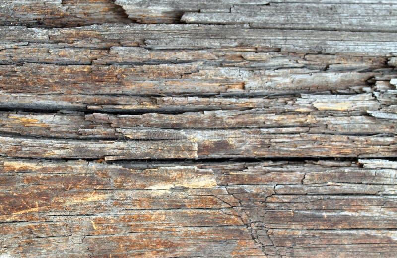 与自然样式的老木纹理 在树背景里面 老脏和被风化的灰色木墙壁板条构造b 免版税图库摄影