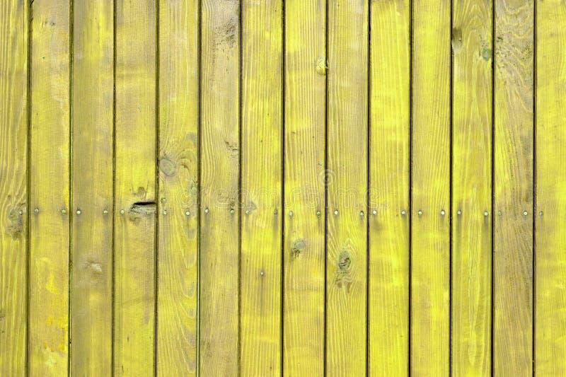 与自然样式的黄色木纹理 图库摄影