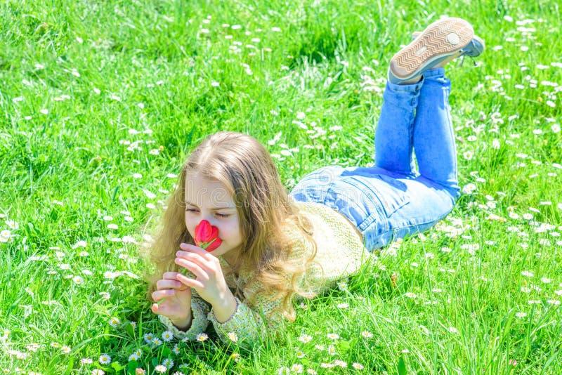 与自然概念团结 微笑的面孔的女孩在晴朗的春日拿着红色郁金香花 孩子享受郁金香芳香  免版税图库摄影
