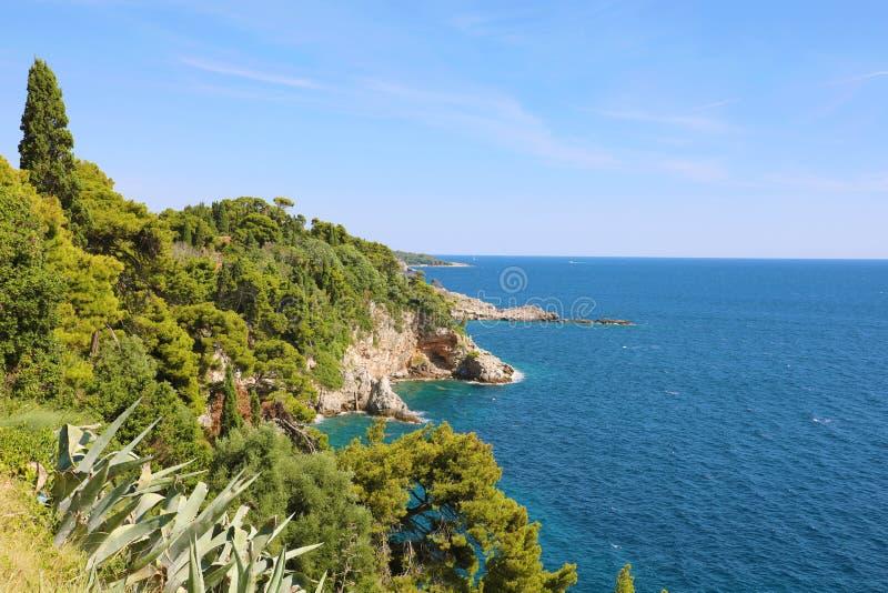 与自然绿色林木的达尔马希亚海岸与蓝色亚得里亚海,克罗地亚,欧洲 免版税库存图片