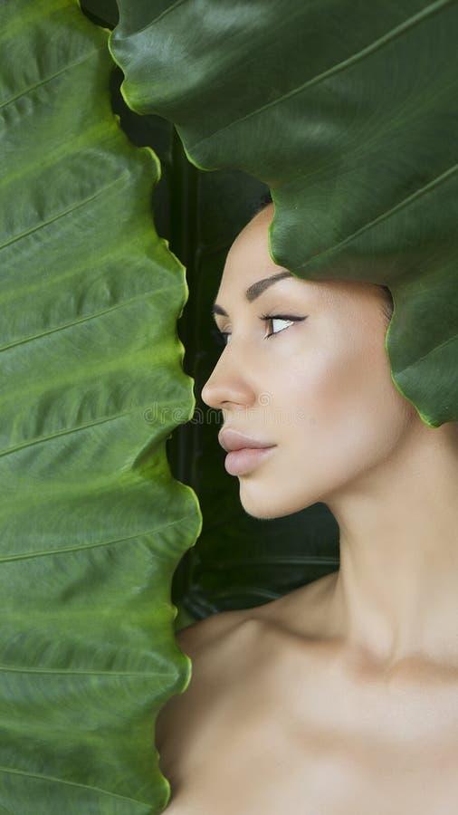 与自然裸体构成的美丽的妇女面孔在一个热带地方教育局 免版税库存照片