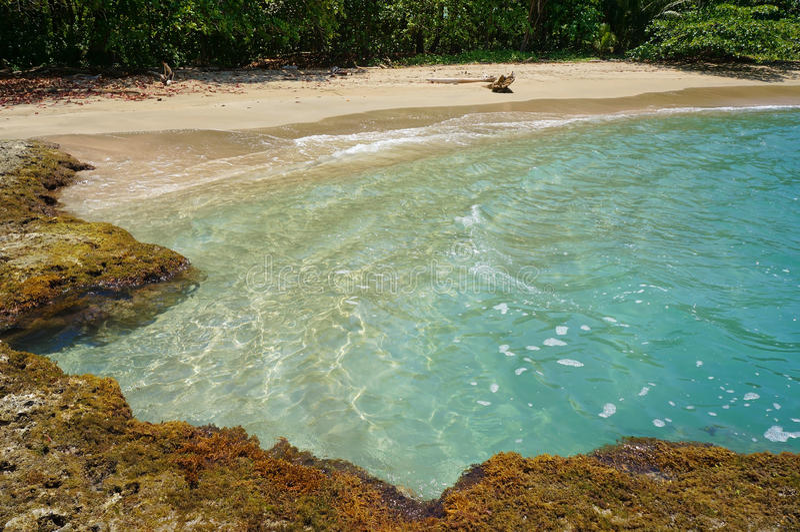与自然水池的热带海滩 图库摄影