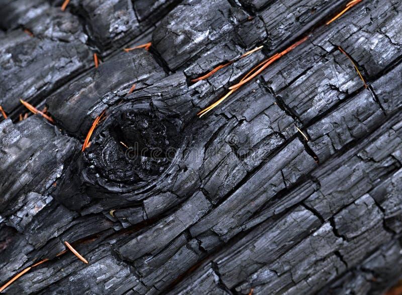 与船腹的被烧焦的木头 免版税库存照片