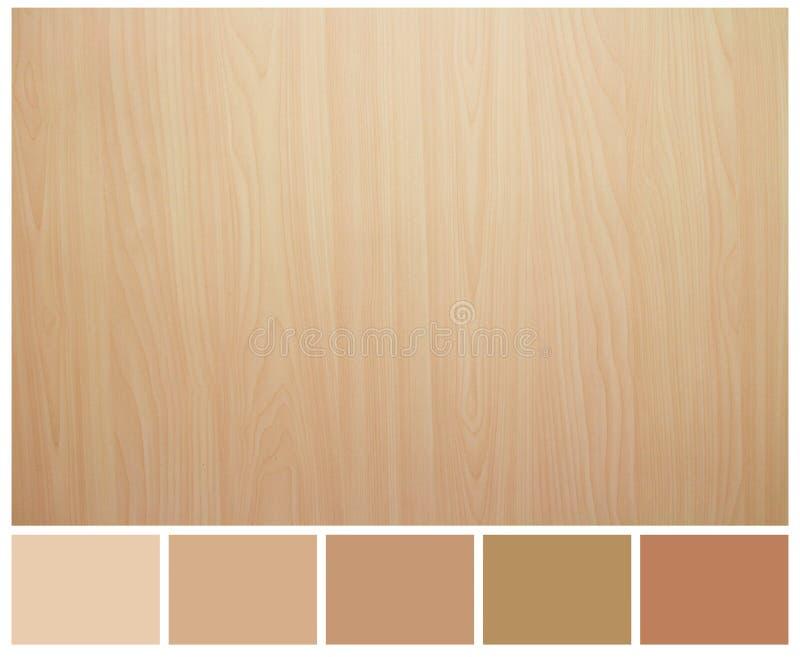 与色板显示指南的无缝的木纹理 免版税库存照片