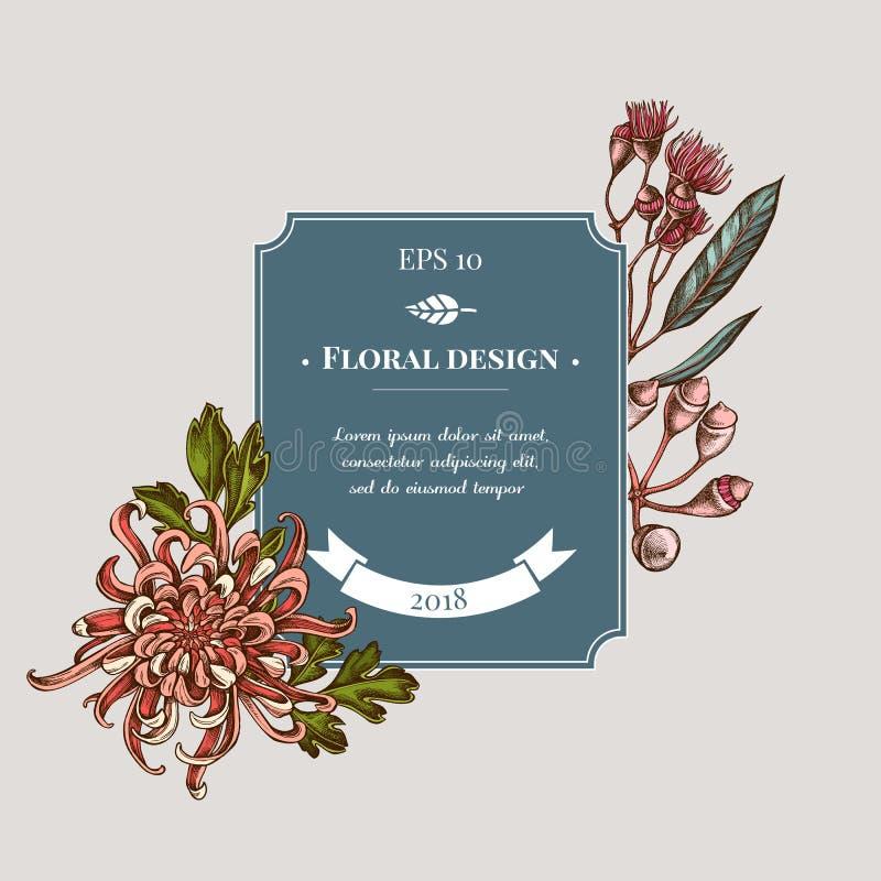 与色的日本菊花,黑莓百合,玉树花的徽章设计 皇族释放例证
