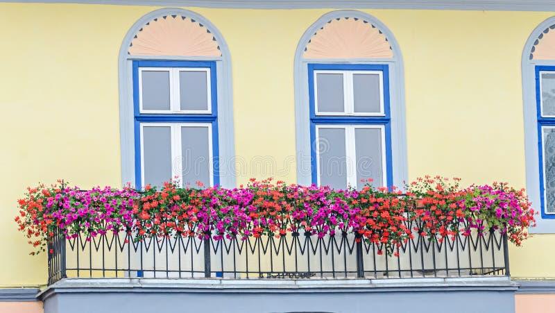 与色的花阳台的充满活力的色的窗口外 免版税库存图片