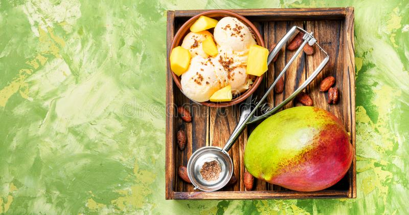 与芒果味道的冰淇凌 免版税库存图片