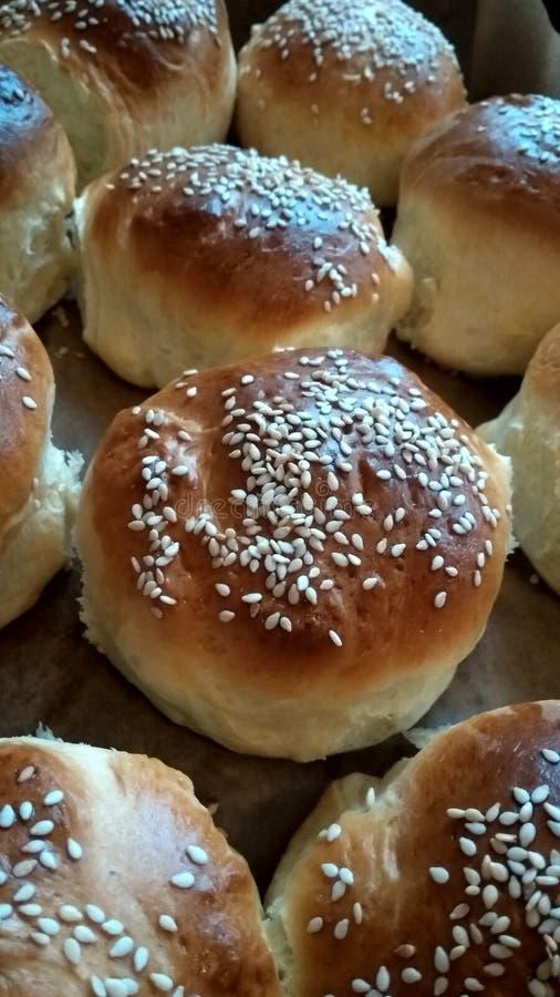 与芝麻籽的小圆面包 免版税库存照片