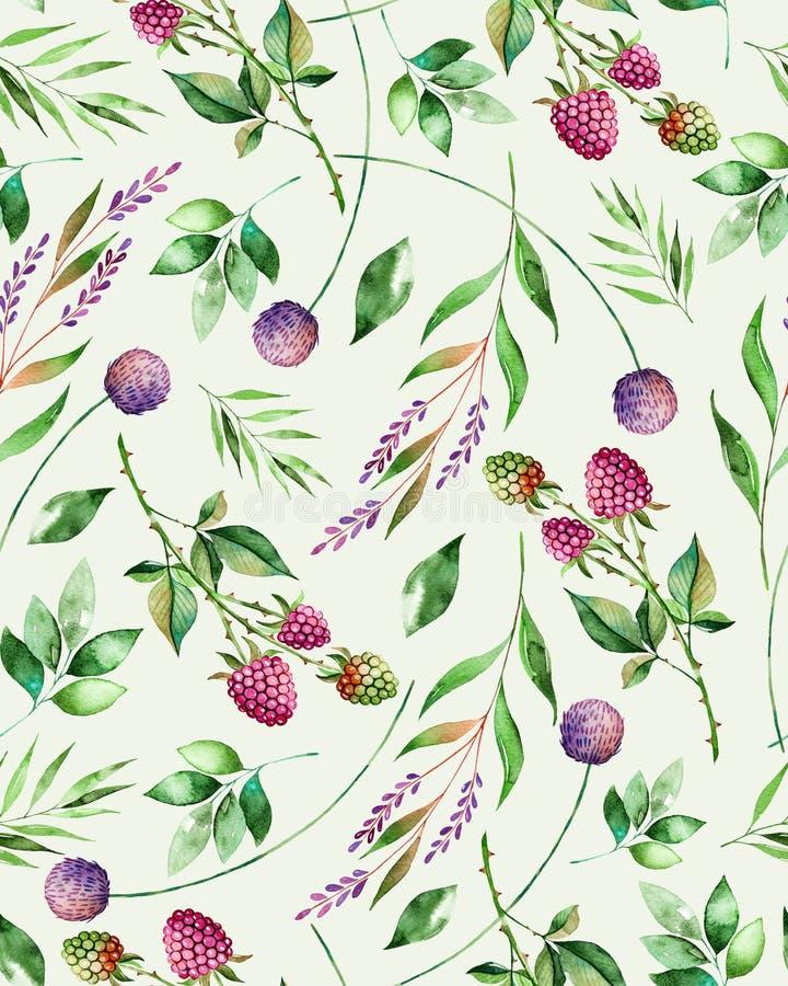与花、莓、分支和叶子的水彩花卉无缝的样式 向量例证