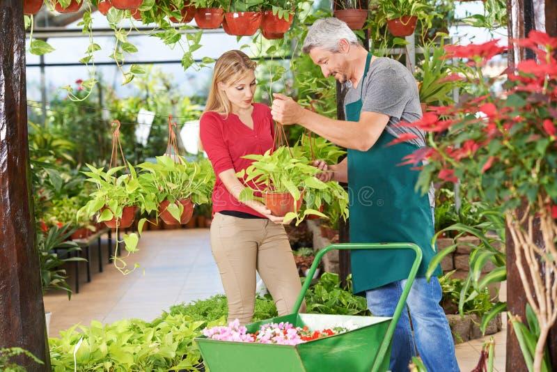 与花匠的咨询在园艺中心 免版税库存照片