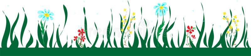 与花和叶子,花卉样式的植物的无缝的边界 库存例证