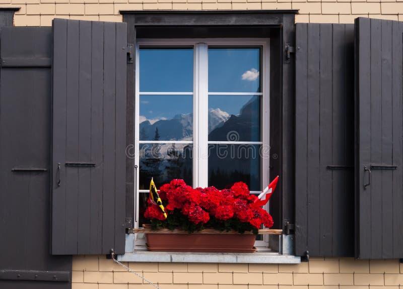 与花和快门的葡萄酒Windows在瑞士 Windows反射山峰的美丽的景色 库存图片