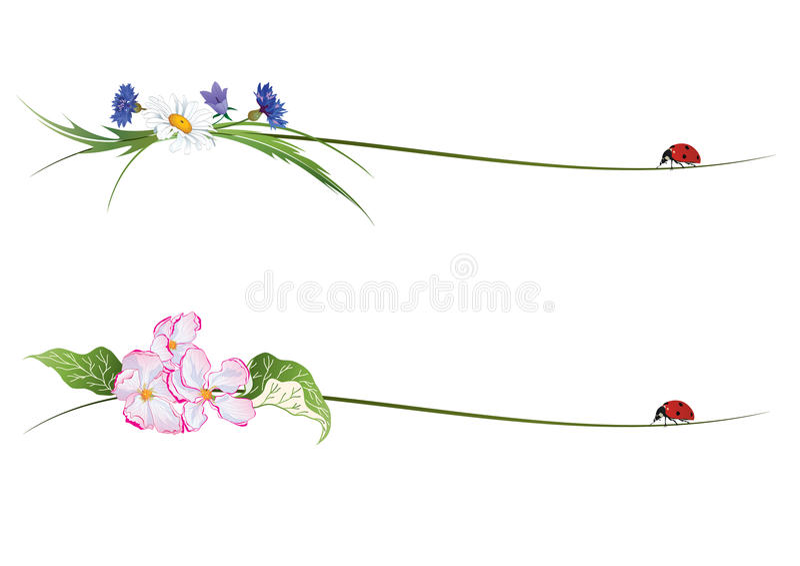 与花和瓢虫的传染媒介小插图 向量例证
