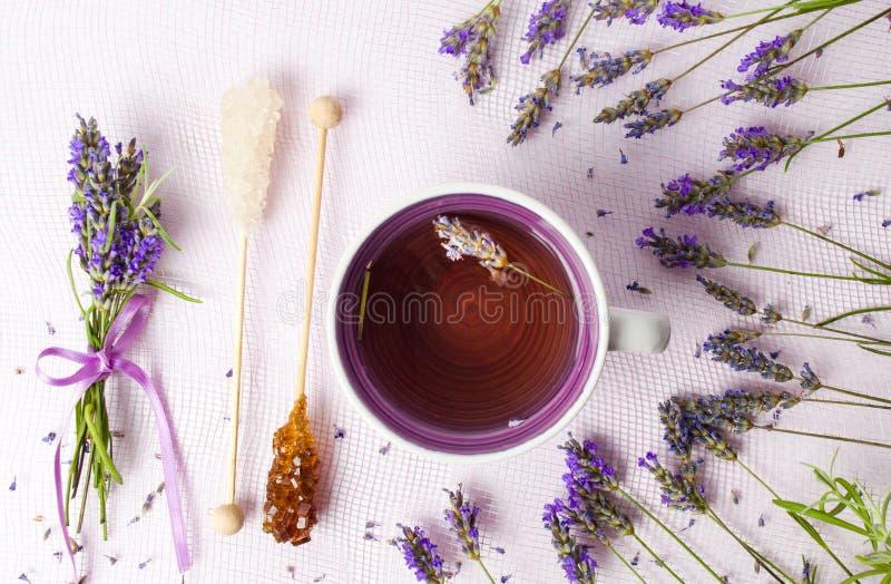 与花和糖棍子的淡紫色茶 免版税图库摄影
