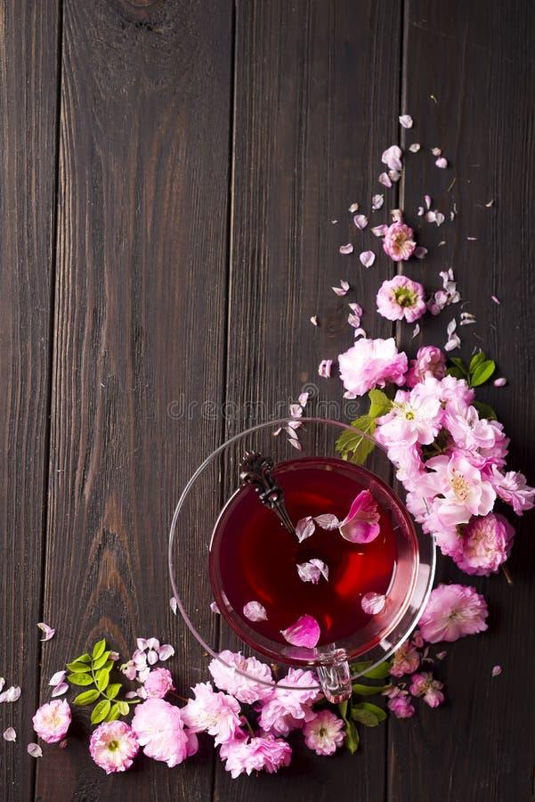 与花和茶的清凉茶成份 库存图片