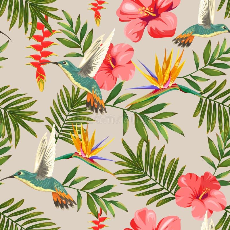 与花和蜂鸟的热带样式 皇族释放例证