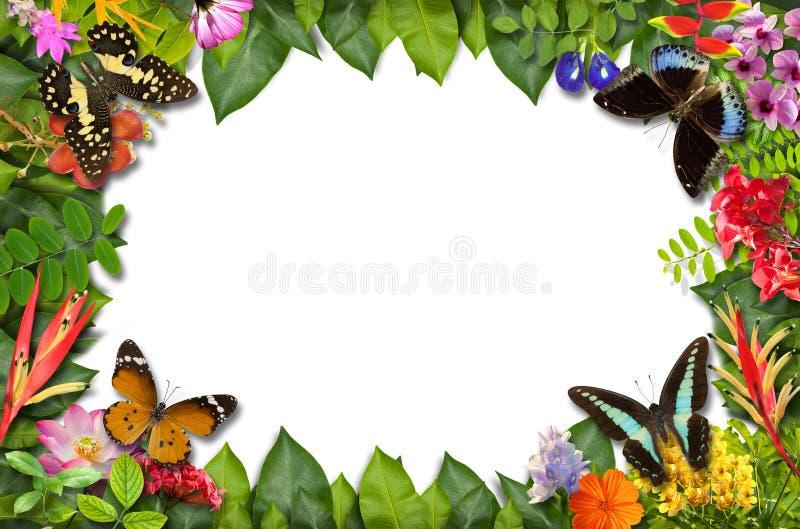 与花和绿色叶子的自然边界 免版税库存图片