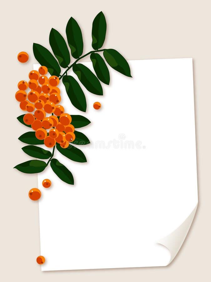 与花楸浆果分行的白皮书页。