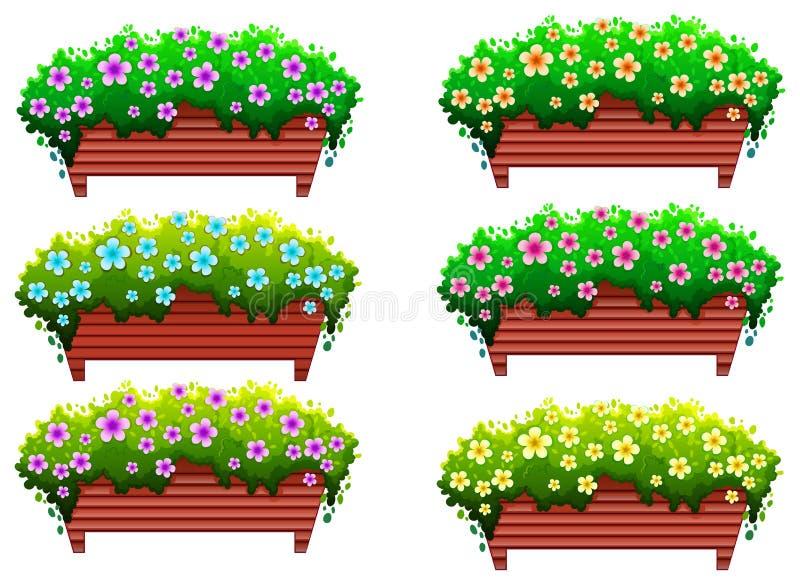 与花的室内植物 库存例证
