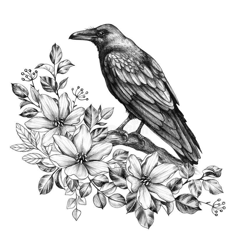与花的掠夺铅笔图 皇族释放例证