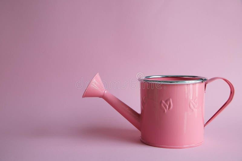 与花的桃红色喷壶,与alstromeria的喷壶,在一把喷壶的一花束在桃红色背景 库存照片