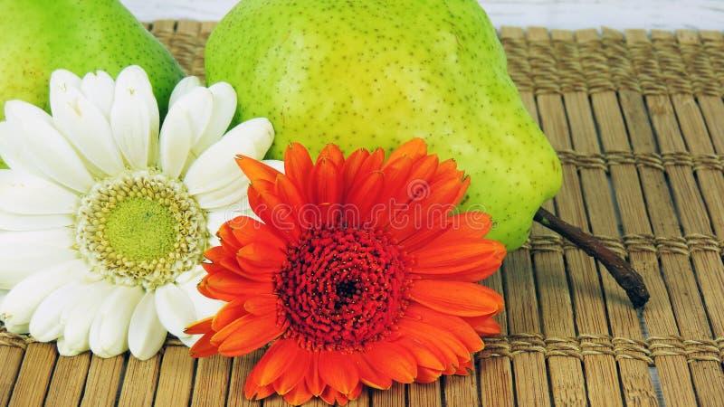 与花的梨 免版税库存图片