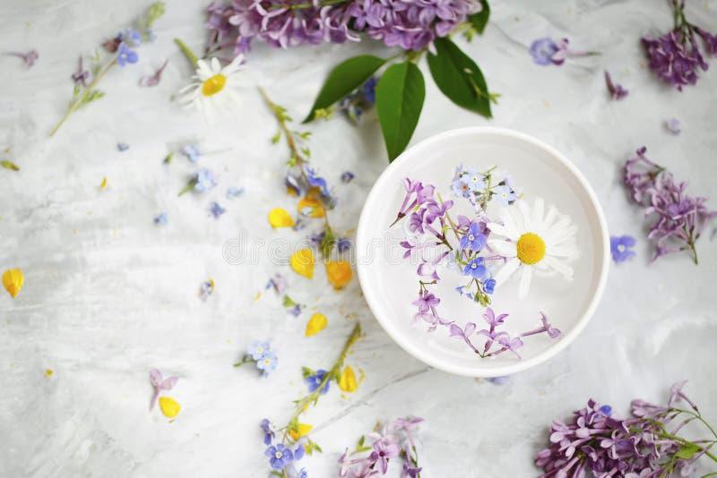 与花的温泉静物画,秀丽与花卉萃取物的温泉治疗顶视图和油 库存图片