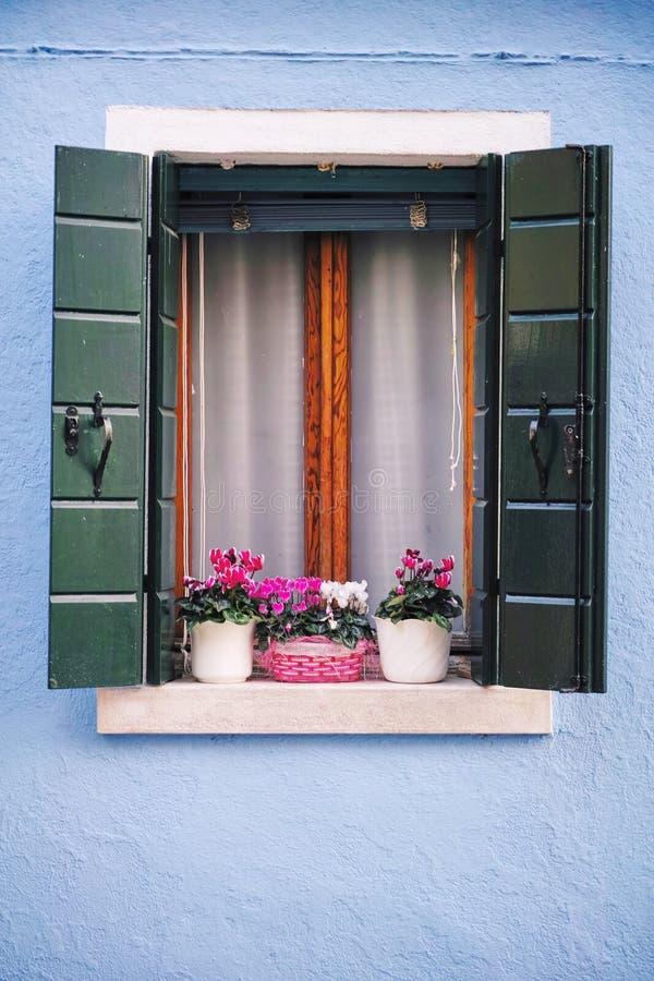 与花的美丽的窗口在威尼斯 图库摄影