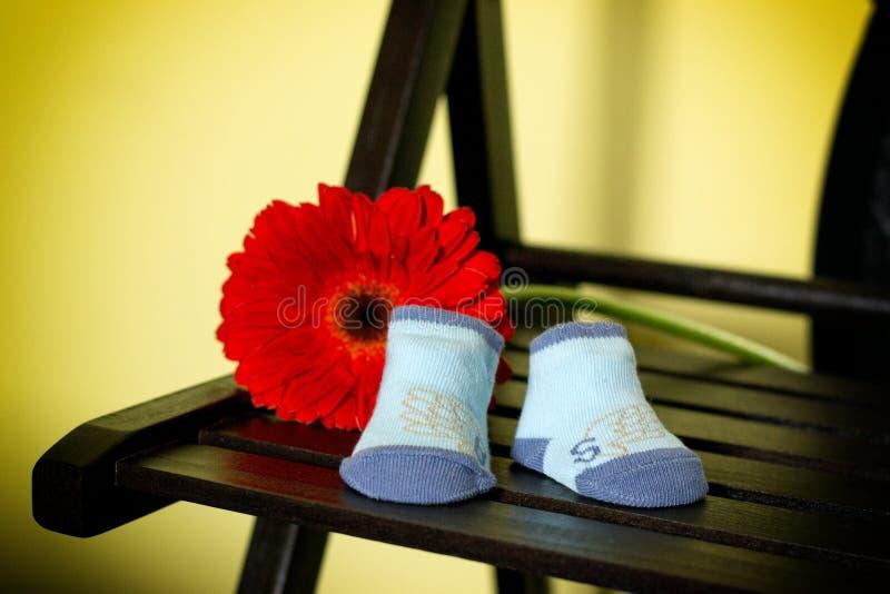 与花的蓝色婴儿袜子 免版税库存照片