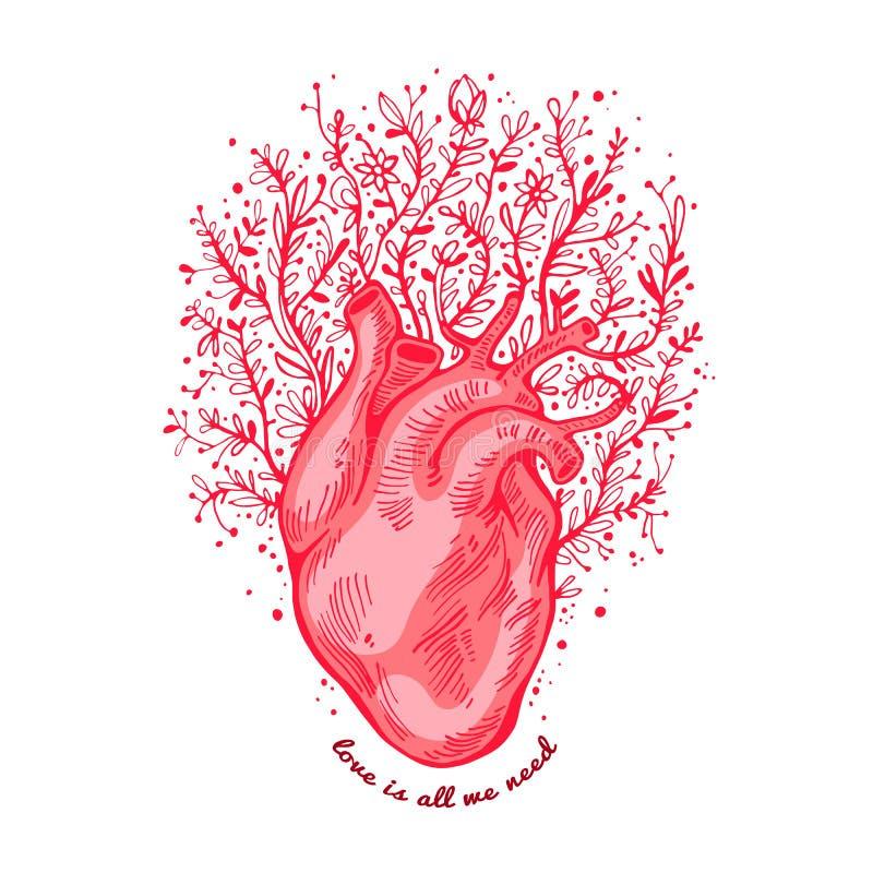 与花的解剖心脏 口号爱是我们需要的所有 可用的看板卡日文件华伦泰向量 传染媒介例证,元素为 向量例证