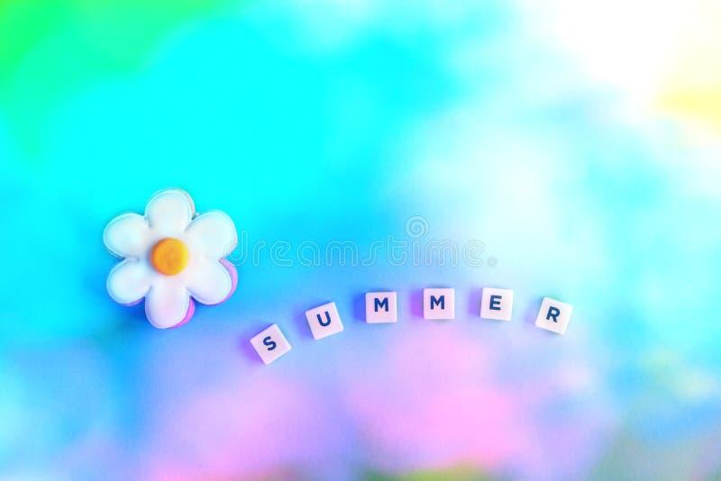 与花的词夏天在梯度 库存照片