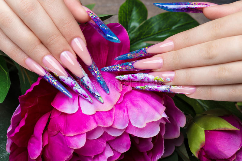 与花的长的美好的修指甲在女性手指 钉子设计 特写镜头 图库摄影