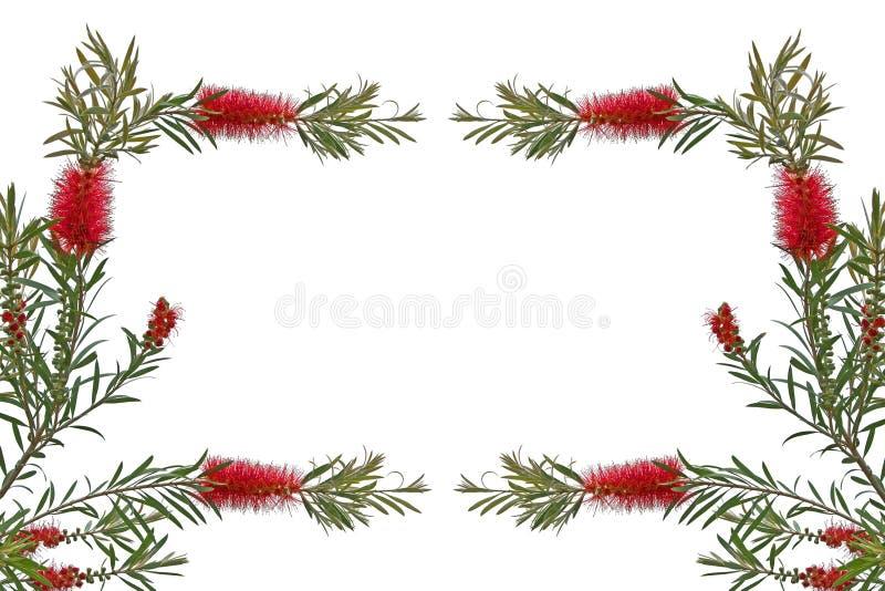 与花的贺卡在白色背景 免版税库存照片