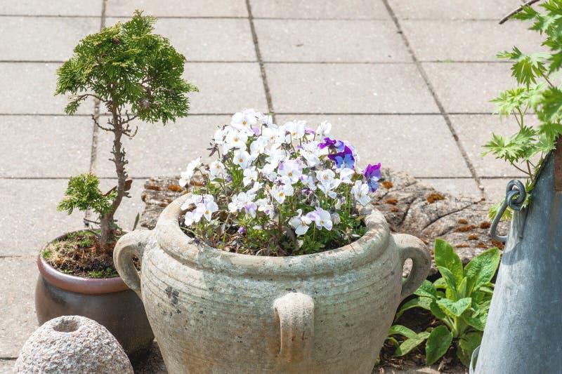 与花盆的庭院装饰品 库存图片