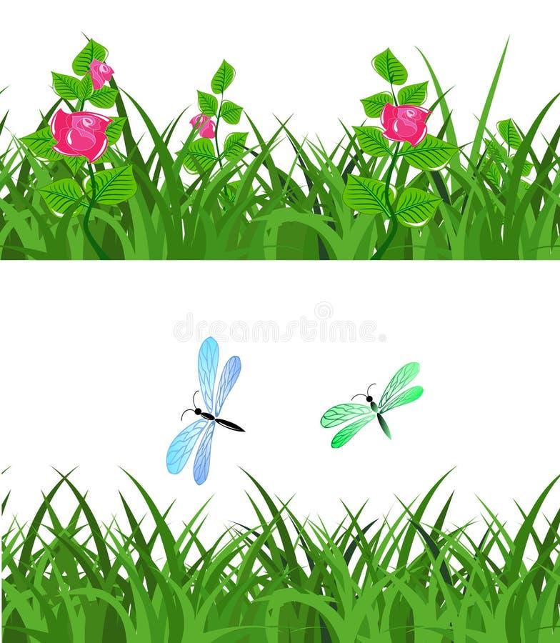 与花花和蜻蜓的无缝的绿草 库存图片