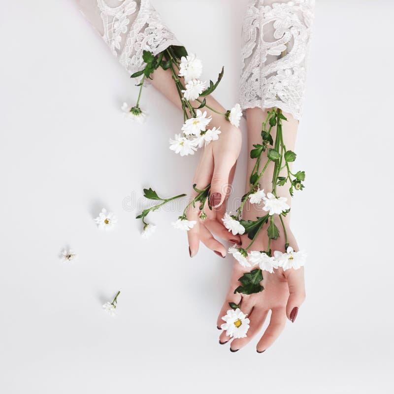 与花萃取物,产品的自然秀丽手化妆用品 夏天时尚在桌上的妇女手与花,护肤 免版税库存图片